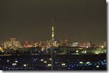 東京スカイツリーの遠望(トリミング済み)