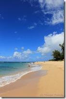 名前も分からない、綺麗なビーチ