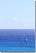 遠くにはヨットが。