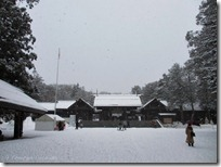 北海道神宮の参道